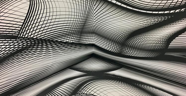 grey contour lines